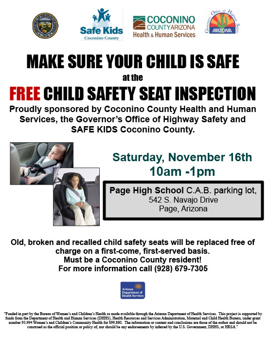 Car Seat Check Flyer