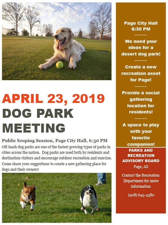Dog Park Meeting Flyer